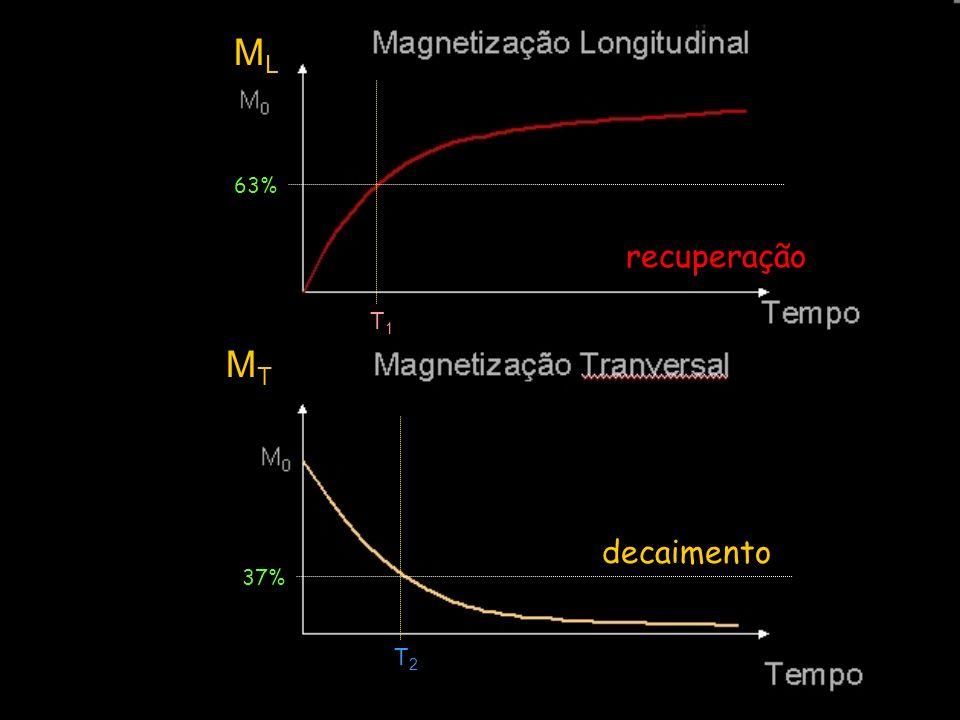 ML T1 63% recuperação MT T2 decaimento 37%
