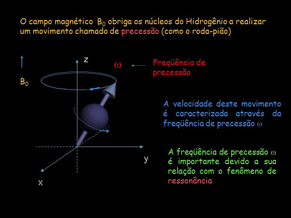 O campo magnético B0 obriga os núcleos do Hidrogênio a realizar um movimento chamado de precessão (como o roda-pião)