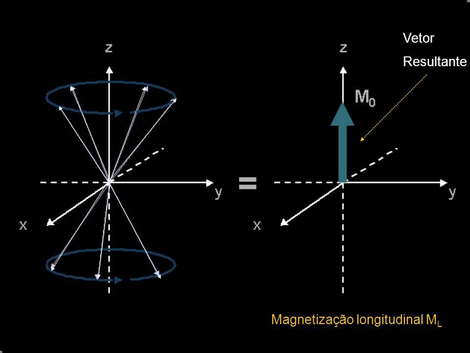 Vetor Resultante Magnetização longitudinal ML