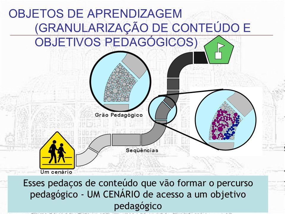 OBJETOS DE APRENDIZAGEM (GRANULARIZAÇÃO DE CONTEÚDO E OBJETIVOS PEDAGÓGICOS)