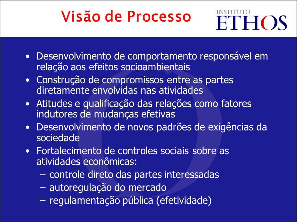 Visão de Processo Desenvolvimento de comportamento responsável em relação aos efeitos socioambientais.