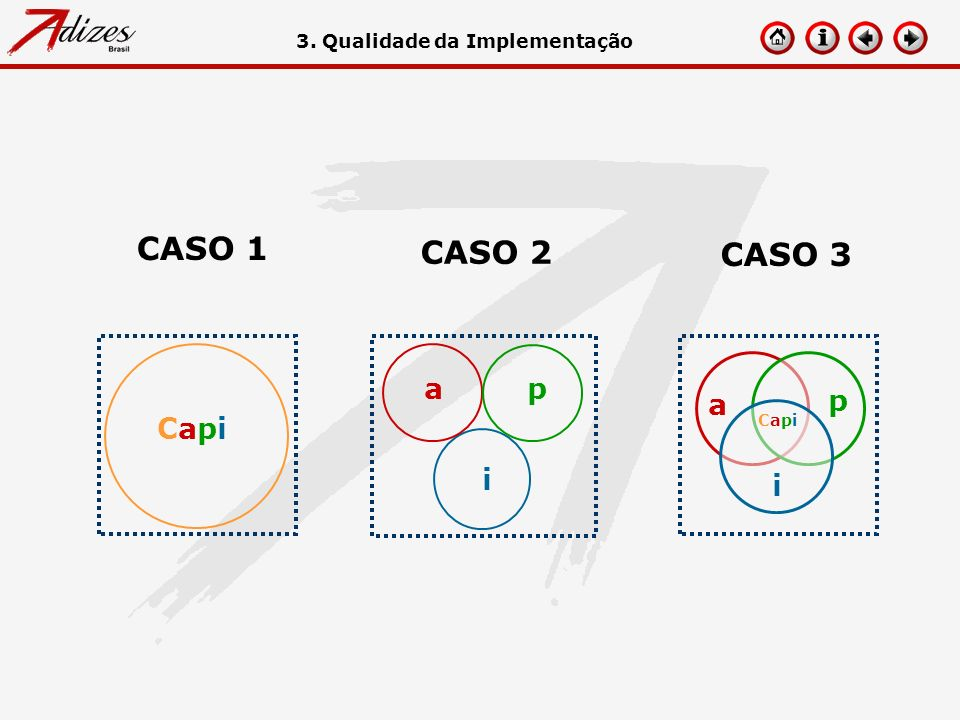 CASO 1 CASO 2 CASO 3 Capi a p i a p i 3. Qualidade da Implementação