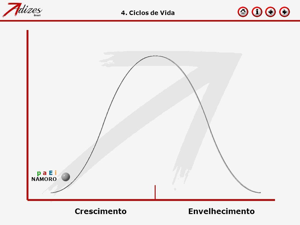 4. Ciclos de Vida p a E i NAMORO Crescimento Envelhecimento