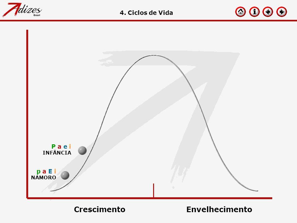 Crescimento Envelhecimento 4. Ciclos de Vida P a e i p a E i INFÂNCIA