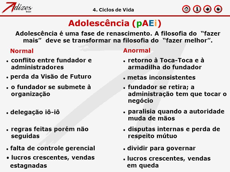 4. Ciclos de Vida Adolescência (pAEi)