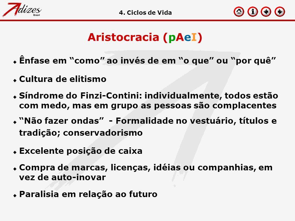 4. Ciclos de Vida Aristocracia (pAeI) Ênfase em como ao invés de em o que ou por quê Cultura de elitismo.