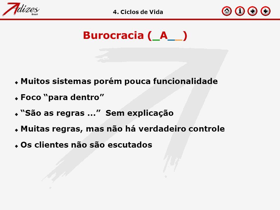 Burocracia (_A__) Muitos sistemas porém pouca funcionalidade