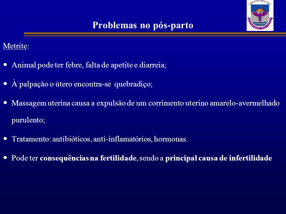 Problemas no pós-parto