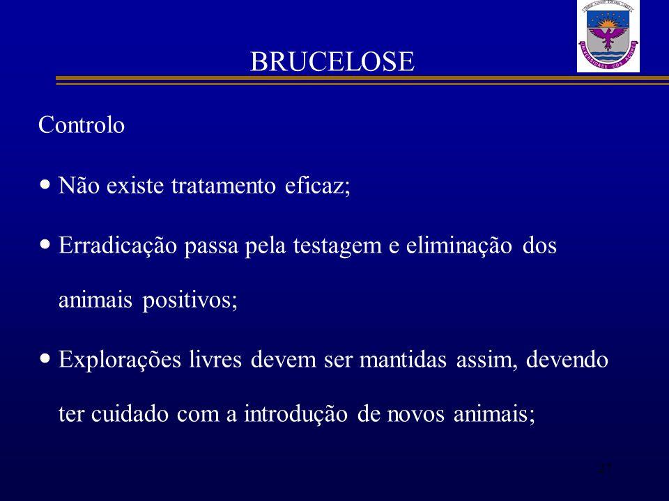 BRUCELOSE Controlo Não existe tratamento eficaz;