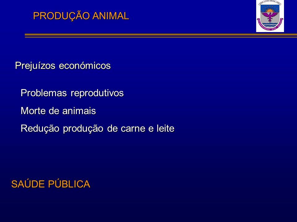 PRODUÇÃO ANIMAL Prejuízos económicos. Problemas reprodutivos. Morte de animais. Redução produção de carne e leite.