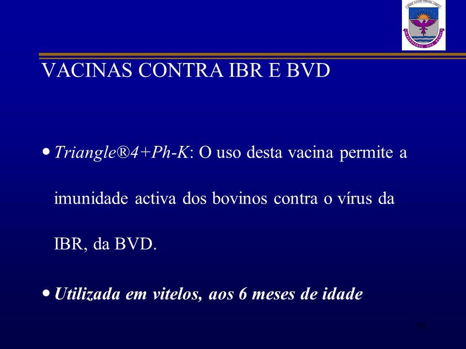 VACINAS CONTRA IBR E BVD