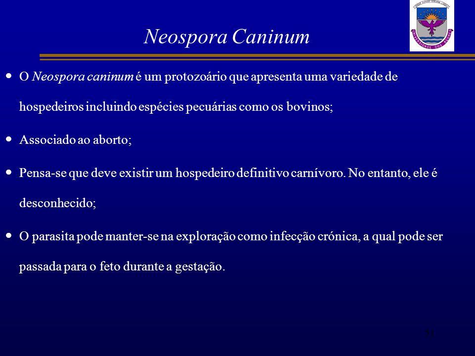 Neospora Caninum O Neospora caninum é um protozoário que apresenta uma variedade de hospedeiros incluindo espécies pecuárias como os bovinos;