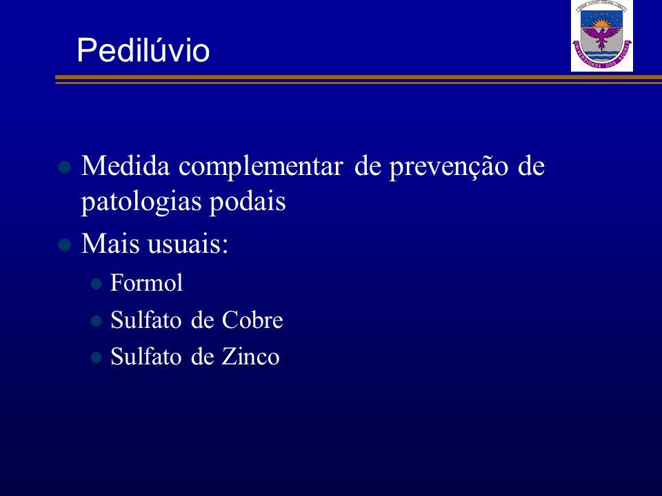 Pedilúvio Medida complementar de prevenção de patologias podais