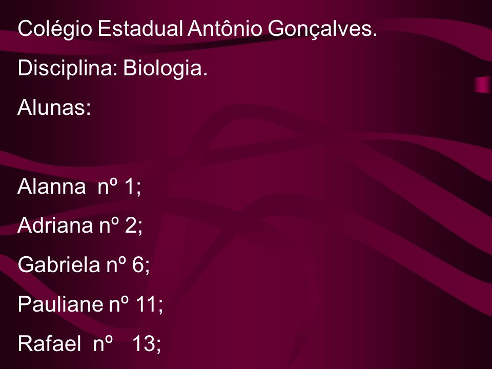Colégio Estadual Antônio Gonçalves.