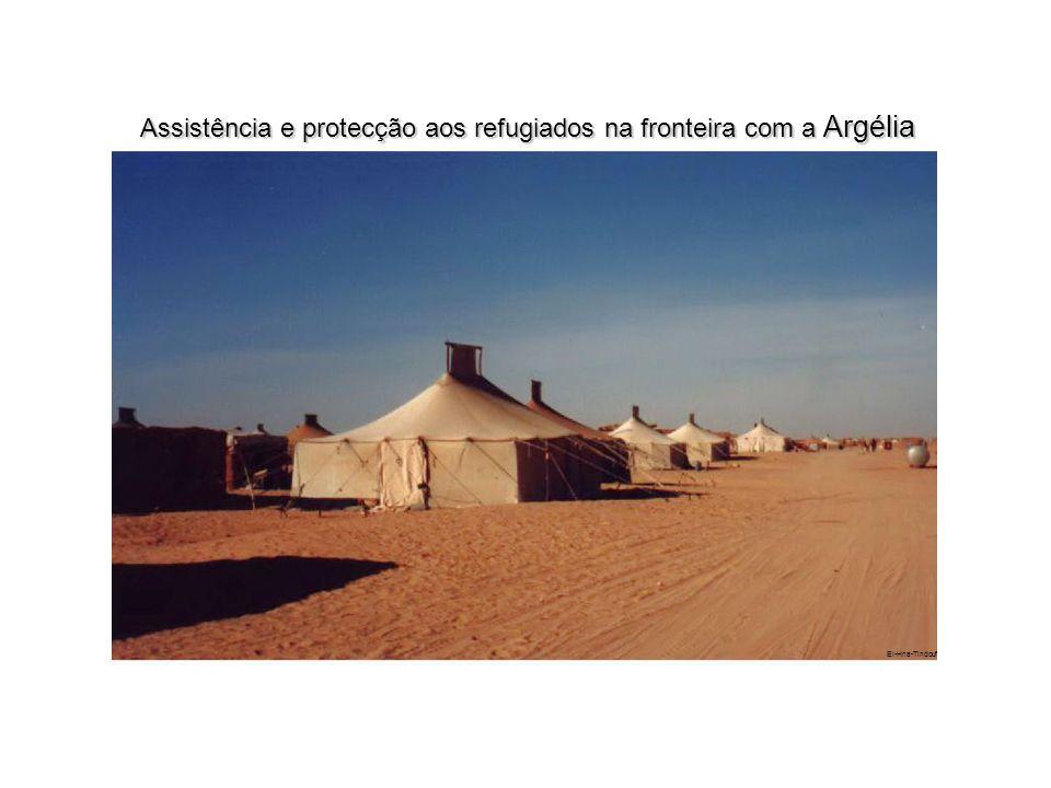 Assistência e protecção aos refugiados na fronteira com a Argélia