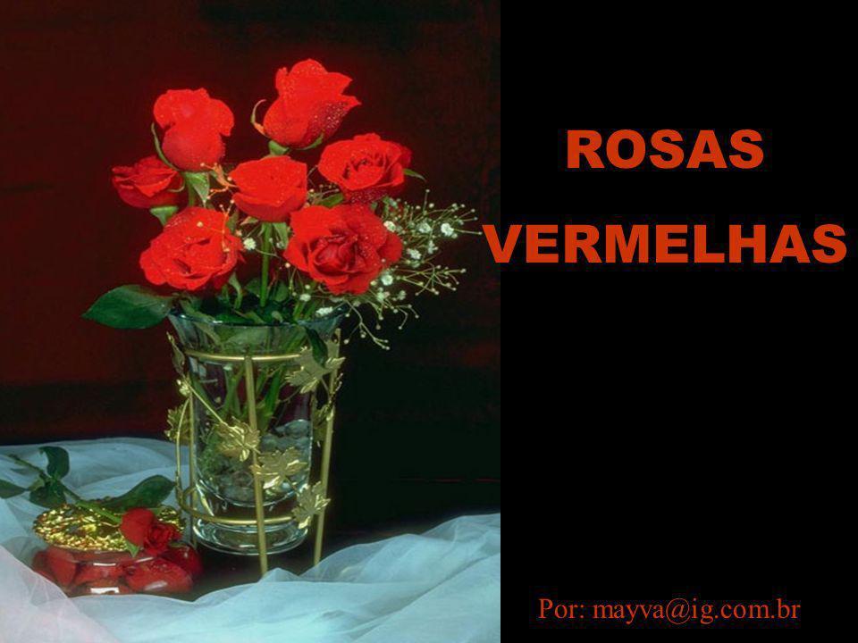 ROSAS VERMELHAS Por: mayva@ig.com.br
