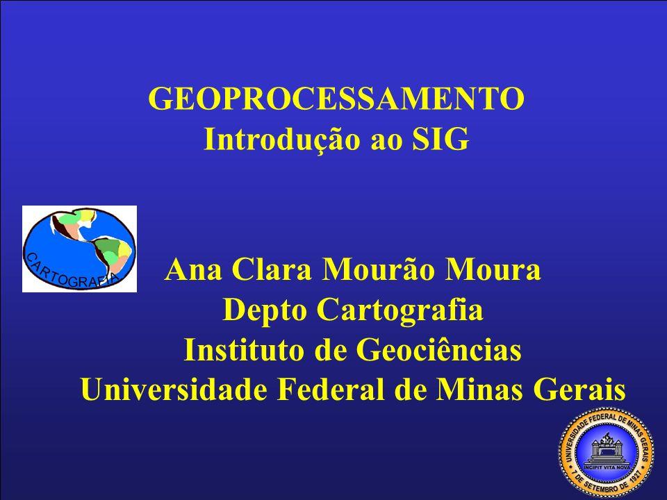 Instituto de Geociências Universidade Federal de Minas Gerais