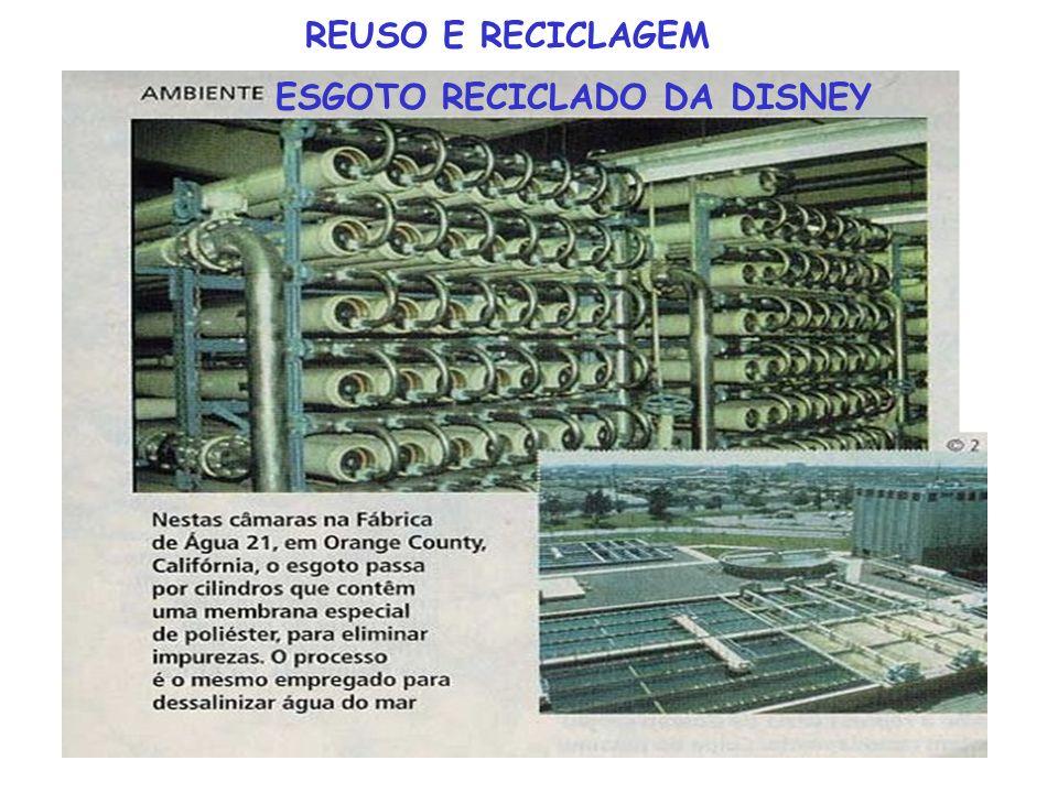 ESGOTO RECICLADO DA DISNEY