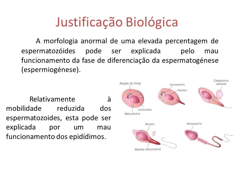 Justificação Biológica