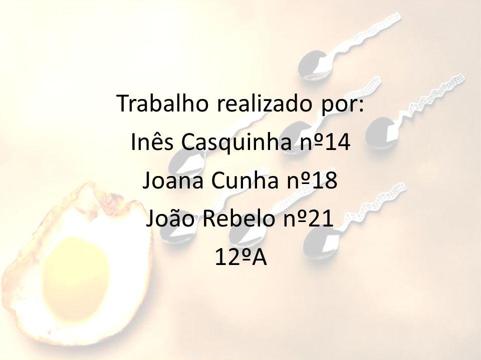 Trabalho realizado por: Inês Casquinha nº14 Joana Cunha nº18 João Rebelo nº21 12ºA