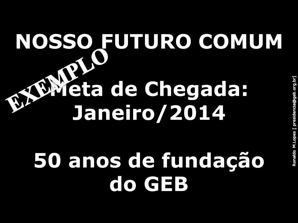 EXEMPLO NOSSO FUTURO COMUM Meta de Chegada: Janeiro/2014