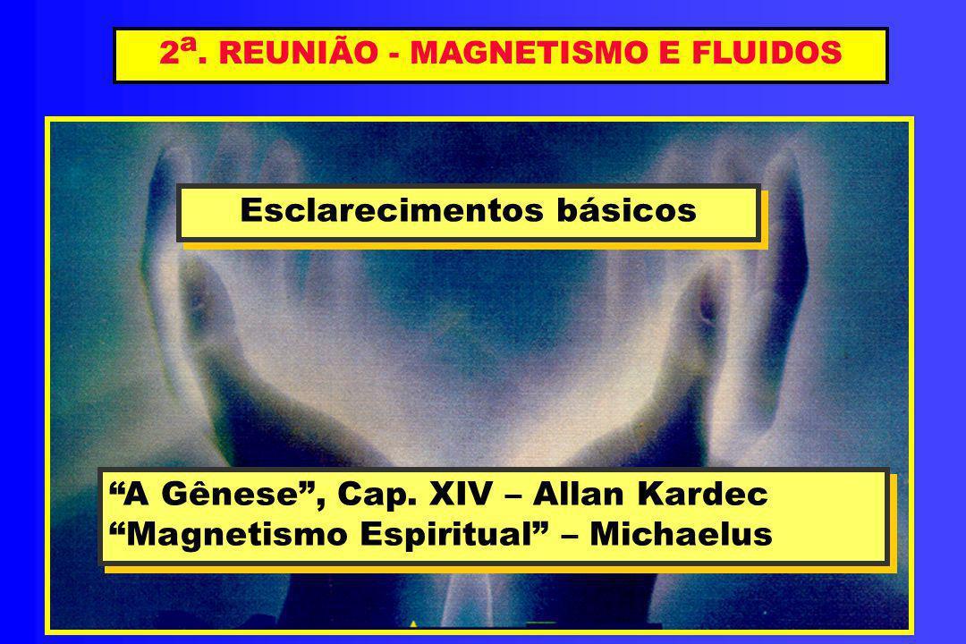 2a. REUNIÃO - MAGNETISMO E FLUIDOS