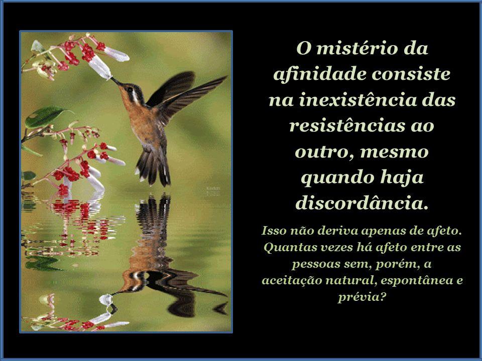 O mistério da afinidade consiste na inexistência das resistências ao outro, mesmo quando haja discordância.