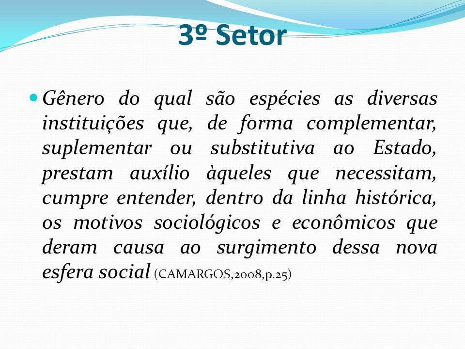3º Setor