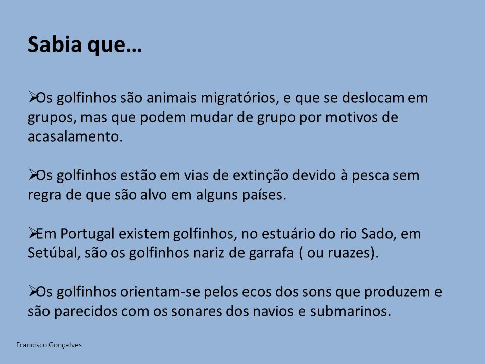 Sabia que… Os golfinhos são animais migratórios, e que se deslocam em grupos, mas que podem mudar de grupo por motivos de acasalamento.