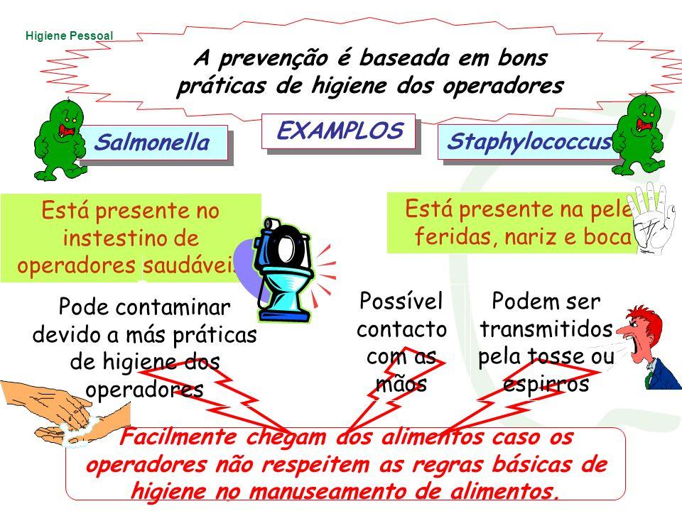 A prevenção é baseada em bons práticas de higiene dos operadores