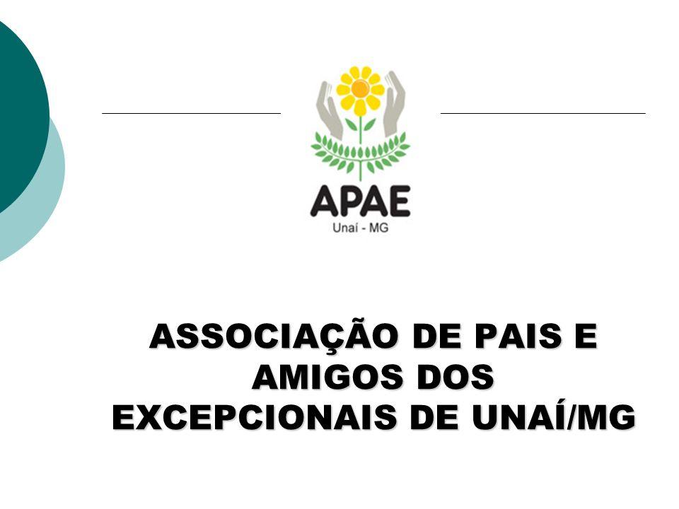ASSOCIAÇÃO DE PAIS E AMIGOS DOS EXCEPCIONAIS DE UNAÍ/MG