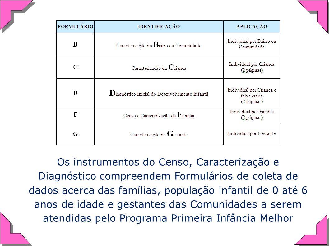 Os instrumentos do Censo, Caracterização e Diagnóstico compreendem Formulários de coleta de dados acerca das famílias, população infantil de 0 até 6 anos de idade e gestantes das Comunidades a serem atendidas pelo Programa Primeira Infância Melhor