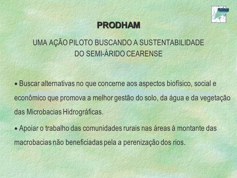 PRODHAM UMA AÇÃO PILOTO BUSCANDO A SUSTENTABILIDADE