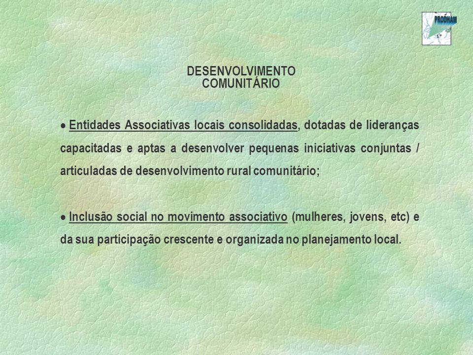 DESENVOLVIMENTO COMUNITÁRIO.