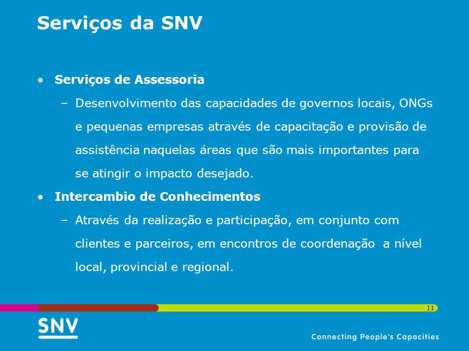 Serviços da SNV Serviços de Assessoria