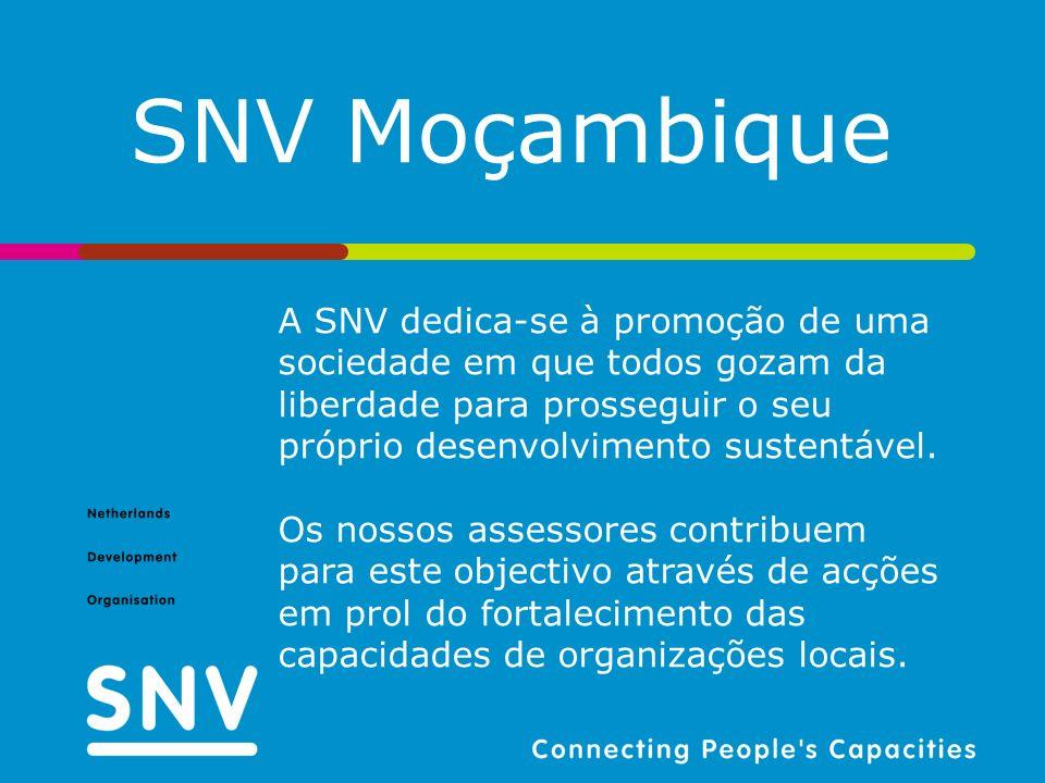 SNV Moçambique A SNV dedica-se à promoção de uma sociedade em que todos gozam da liberdade para prosseguir o seu próprio desenvolvimento sustentável.