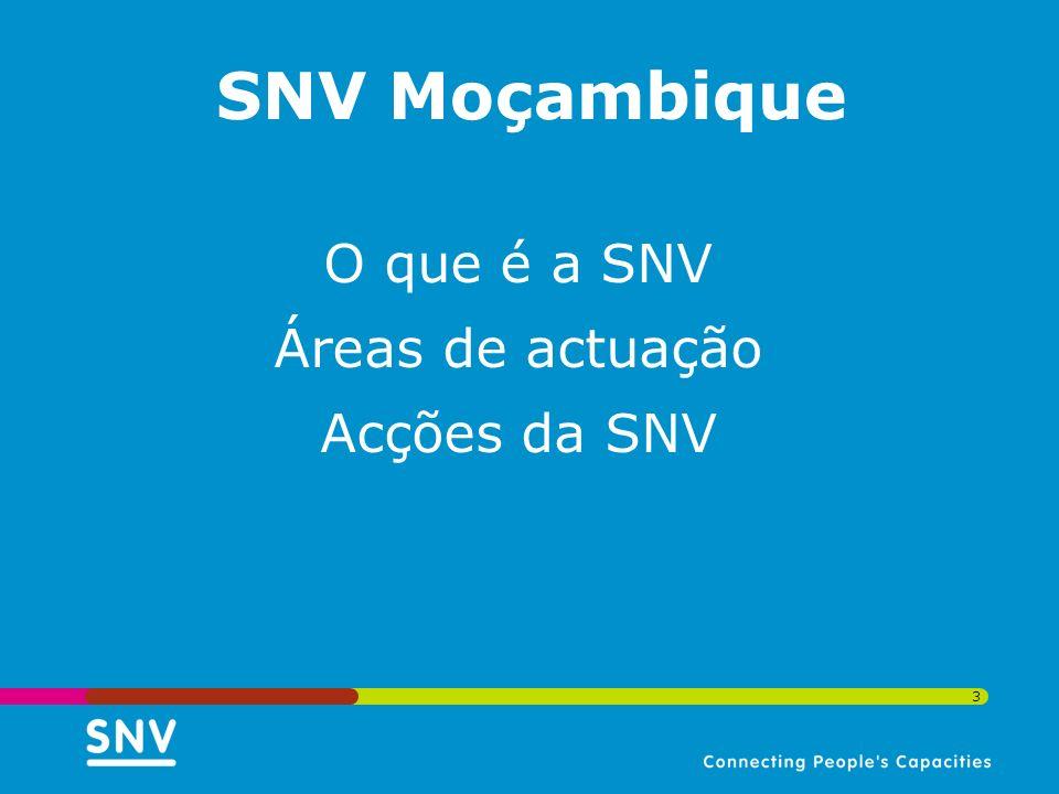 SNV Moçambique O que é a SNV Áreas de actuação Acções da SNV