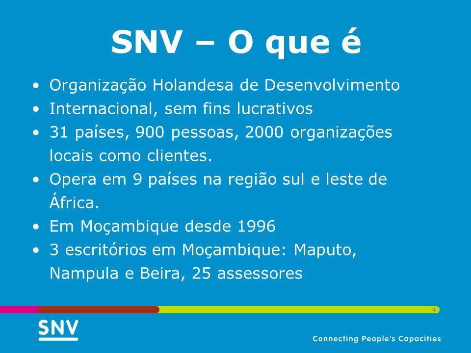 SNV – O que é Organização Holandesa de Desenvolvimento