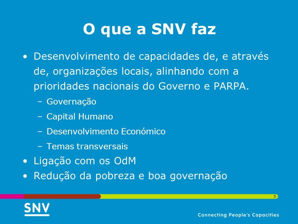 O que a SNV faz Desenvolvimento de capacidades de, e através de, organizações locais, alinhando com a prioridades nacionais do Governo e PARPA.