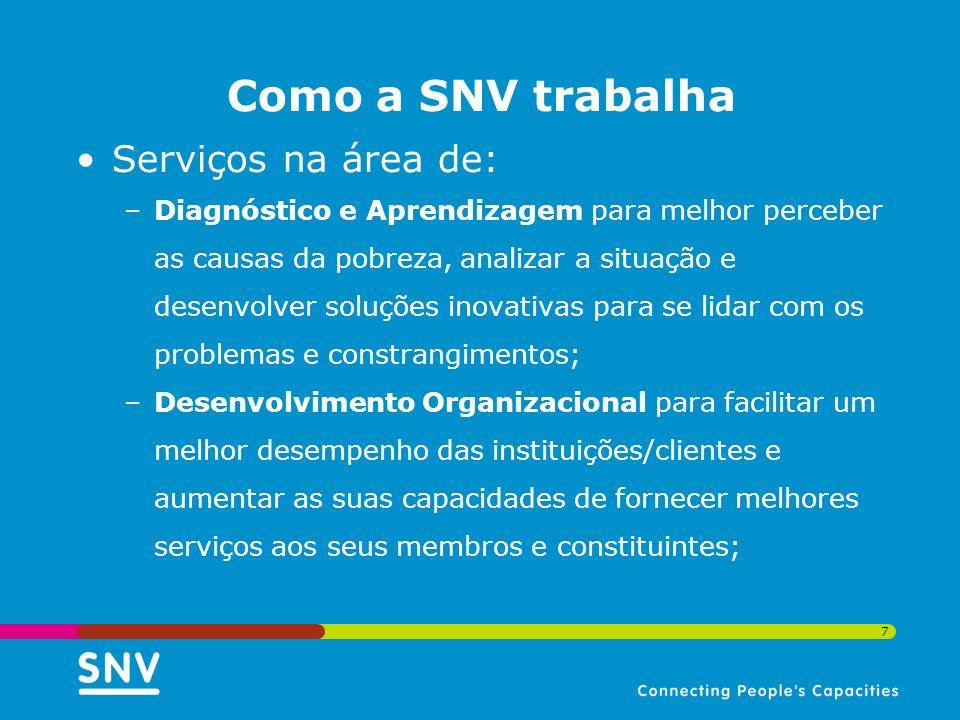Como a SNV trabalha Serviços na área de: