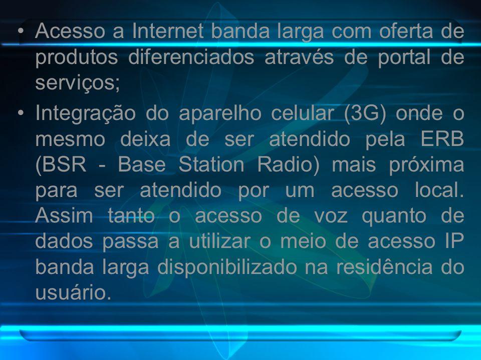 Acesso a Internet banda larga com oferta de produtos diferenciados através de portal de serviços;