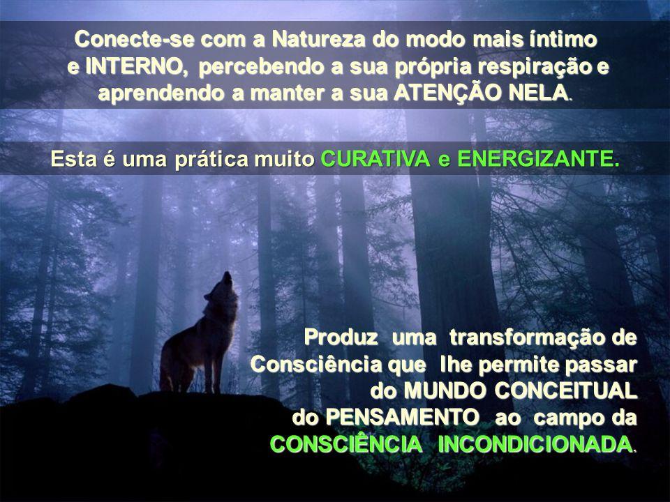 Conecte-se com a Natureza do modo mais íntimo