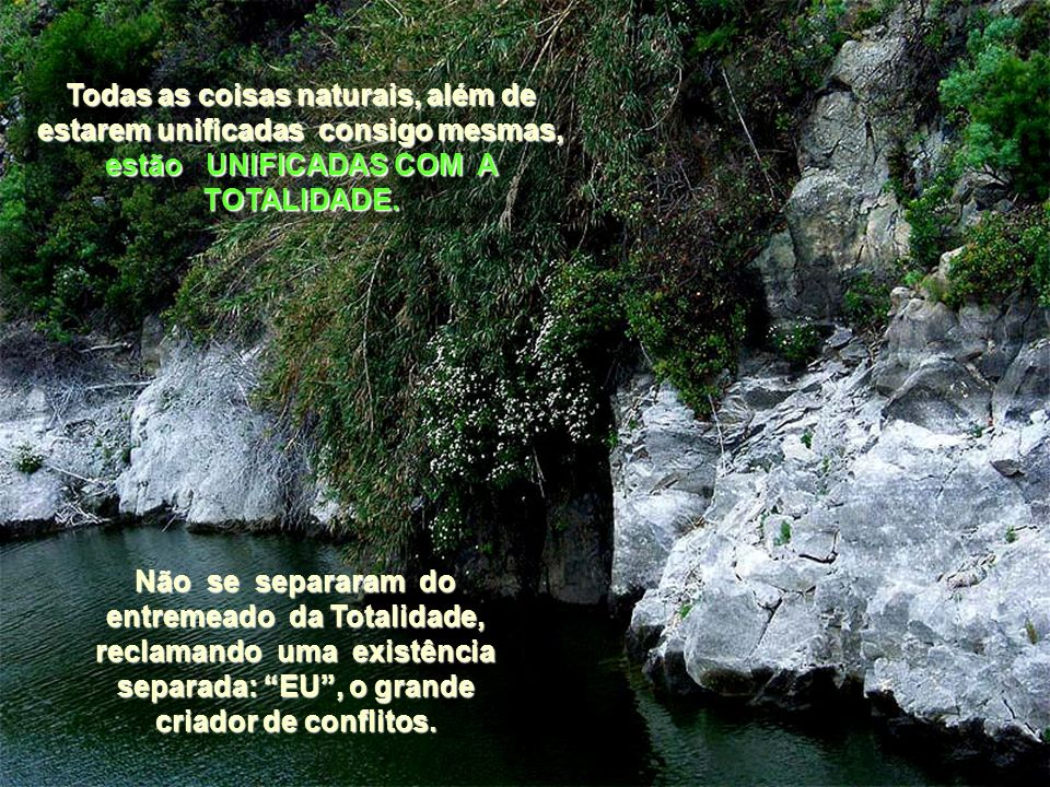 Todas as coisas naturais, além de estarem unificadas consigo mesmas, estão UNIFICADAS COM A TOTALIDADE.