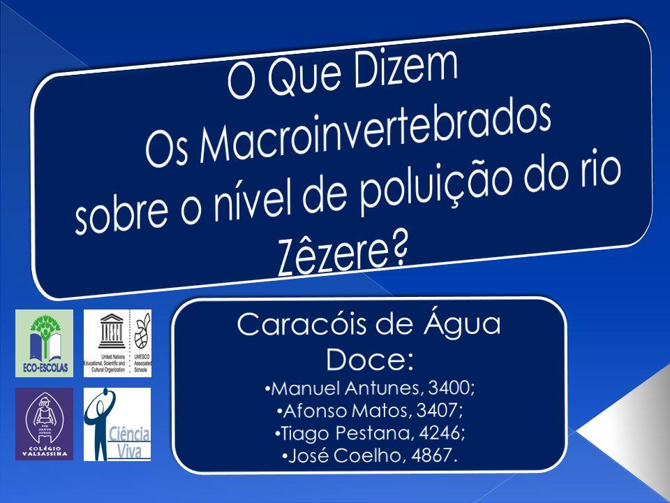 Os Macroinvertebrados sobre o nível de poluição do rio Zêzere