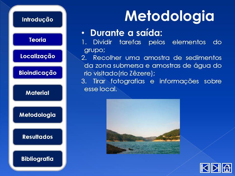 Metodologia Durante a saída: Dividir tarefas pelos elementos do grupo;