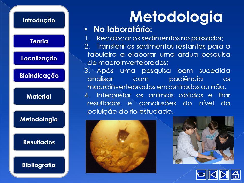 Metodologia No laboratório: Recolocar os sedimentos no passador;