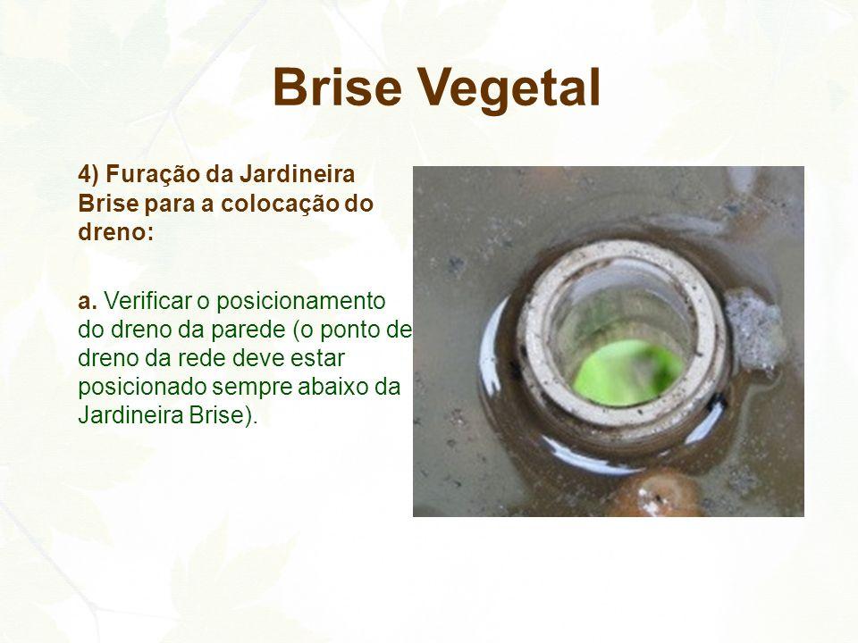 Brise Vegetal 4) Furação da Jardineira Brise para a colocação do dreno: