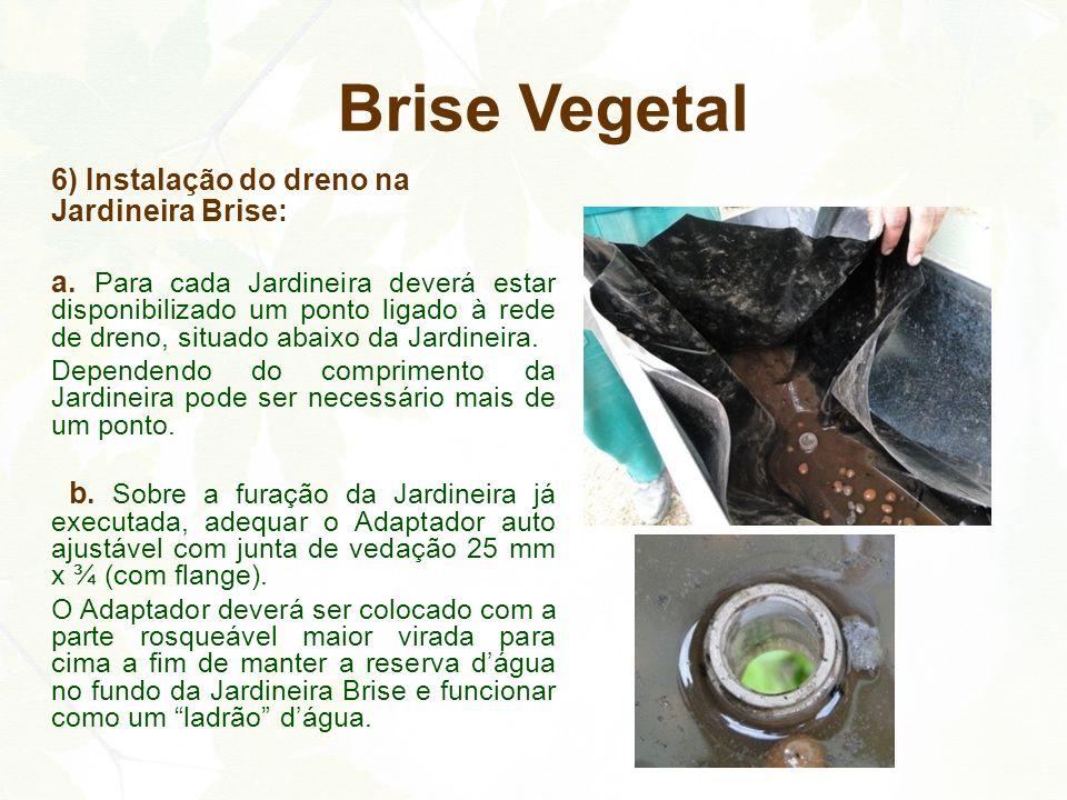 Brise Vegetal 6) Instalação do dreno na Jardineira Brise: