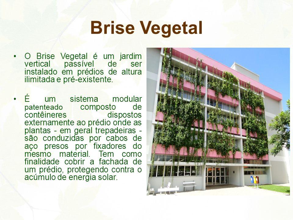 Brise Vegetal O Brise Vegetal é um jardim vertical passível de ser instalado em prédios de altura ilimitada e pré-existente.