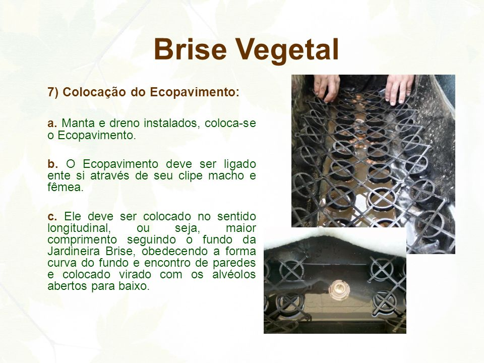 Brise Vegetal 7) Colocação do Ecopavimento: